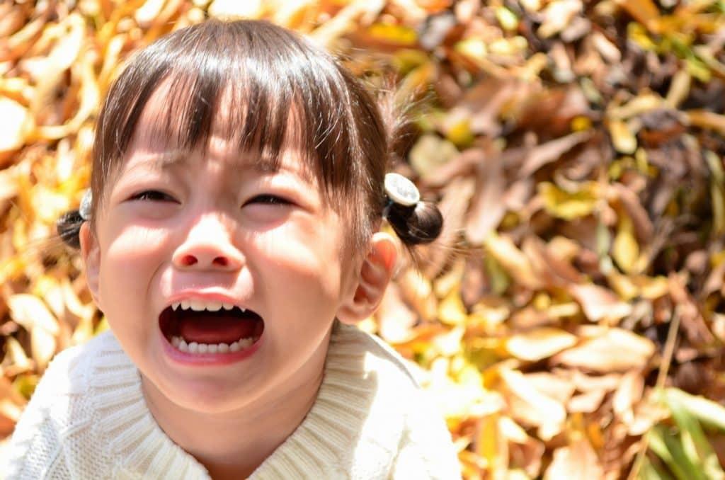 まとめ:子供のイヤイヤ期は成長のひとつ!
