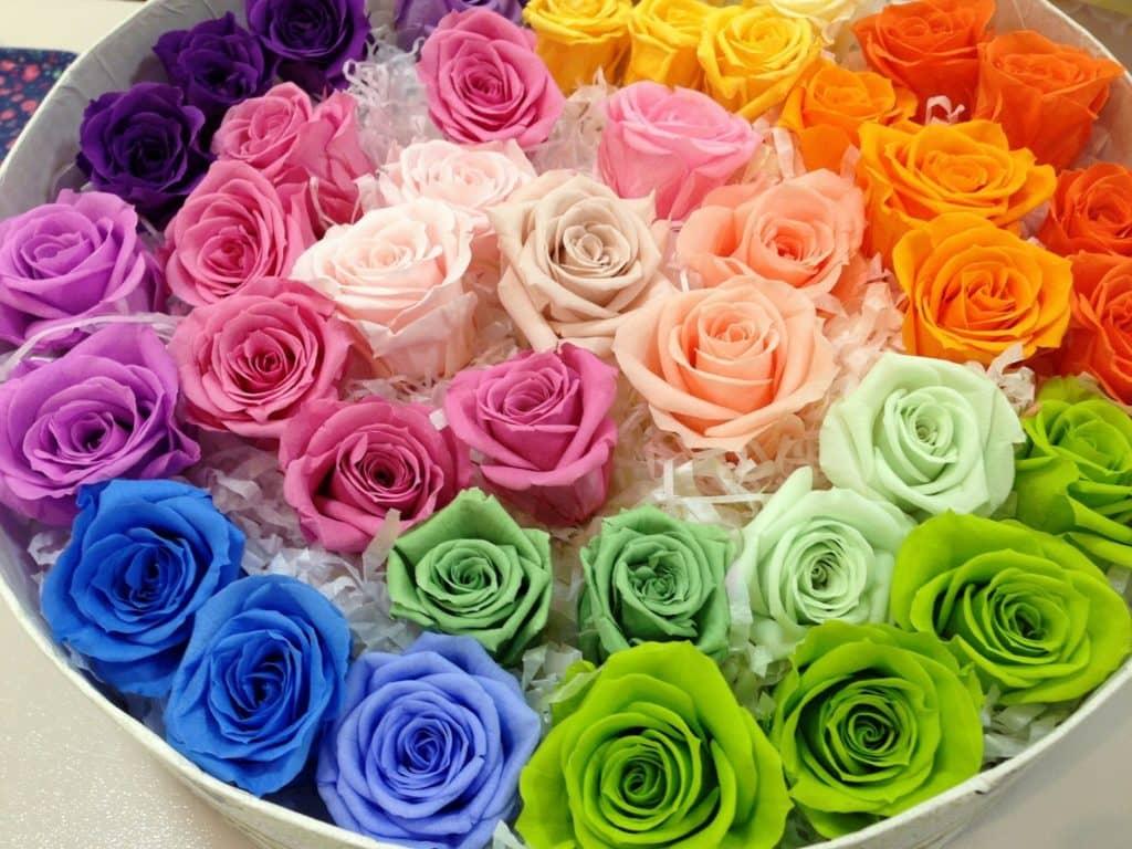 母の日のフラワーギフトは生花、プリザーブドフラワー、造花のどれがいい?