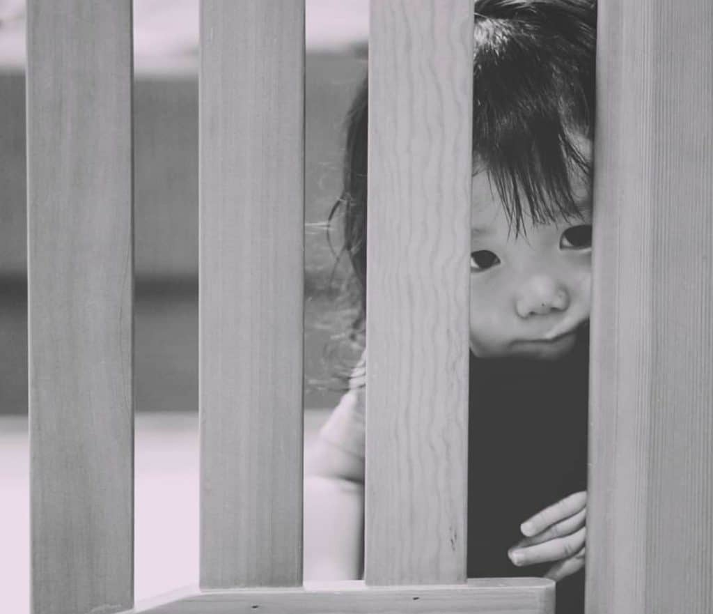 ベビーゲート選びのポイント6:赤ちゃんの様子が見えるのは柵タイプかネットタイプ