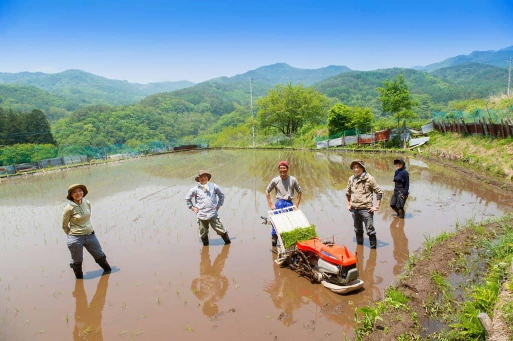 農業、林業、漁業関係者が多い県は共働き率が高い?