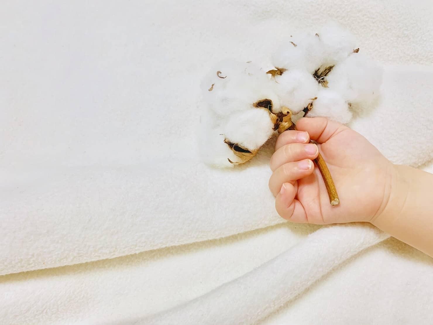 清浄綿はママの授乳に必要? 使い方や使用期限、おすすめ商品11選!