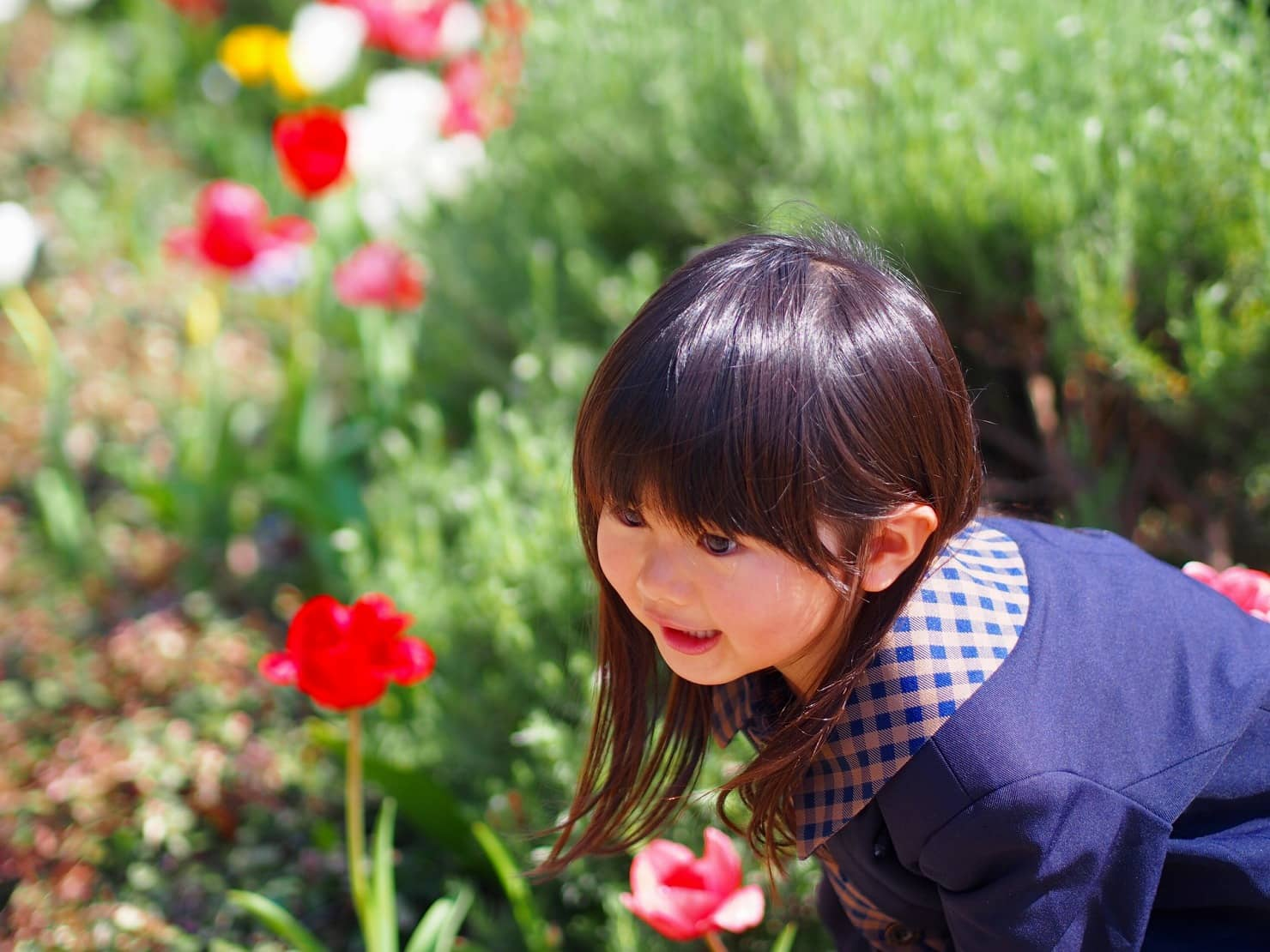 3歳におすすめのクリスマスプレゼント15選【2019年最新版 女の子編】