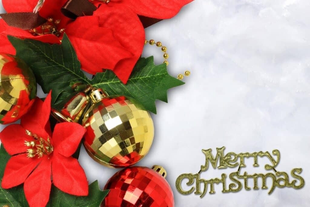 子供へのクリスマスカードメッセージ