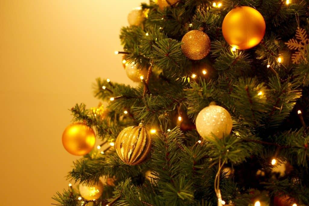 なぜクリスマスツリーを飾るの?