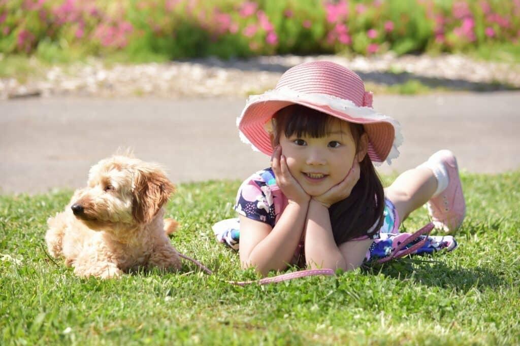 まとめ:赤ちゃんと犬が最高のパートナーになるように