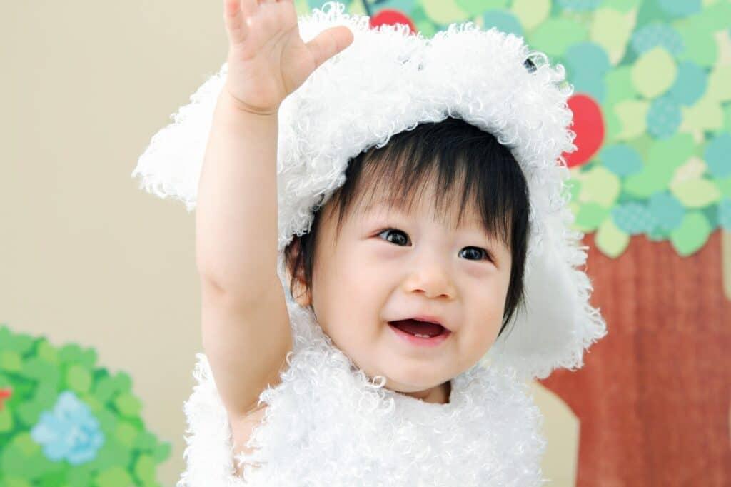 【干支にも使える!】動物の赤ちゃん用着ぐるみ