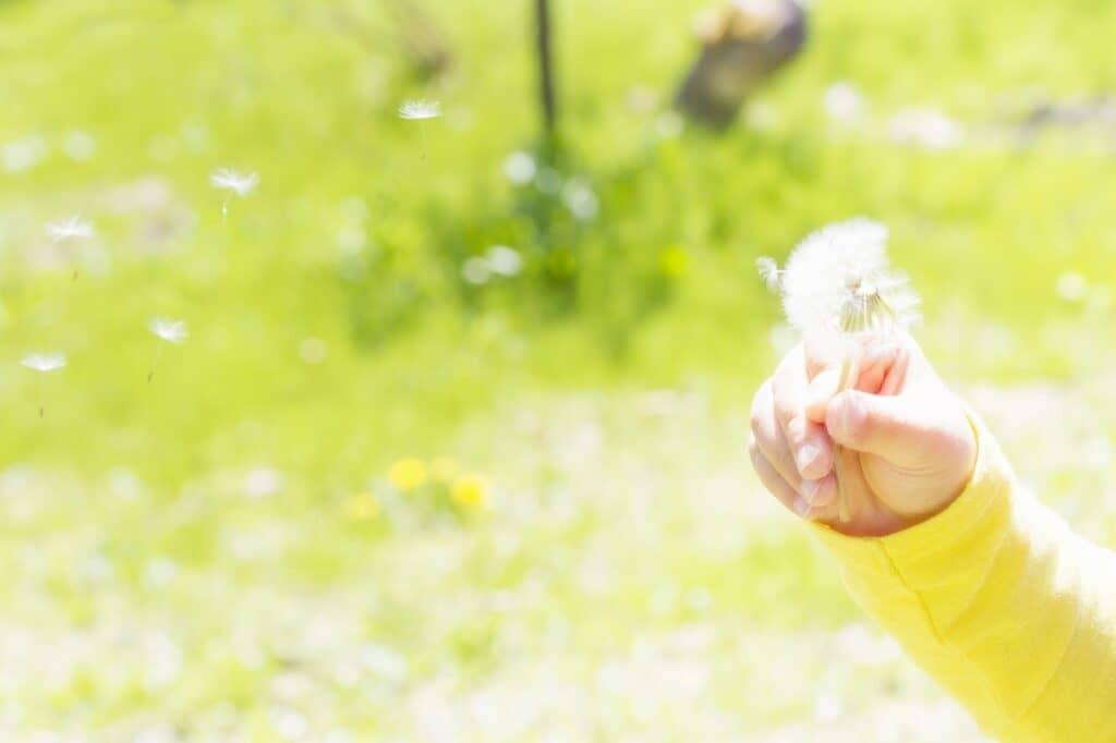 まとめ:乳児院は赤ちゃんと家族をサポート