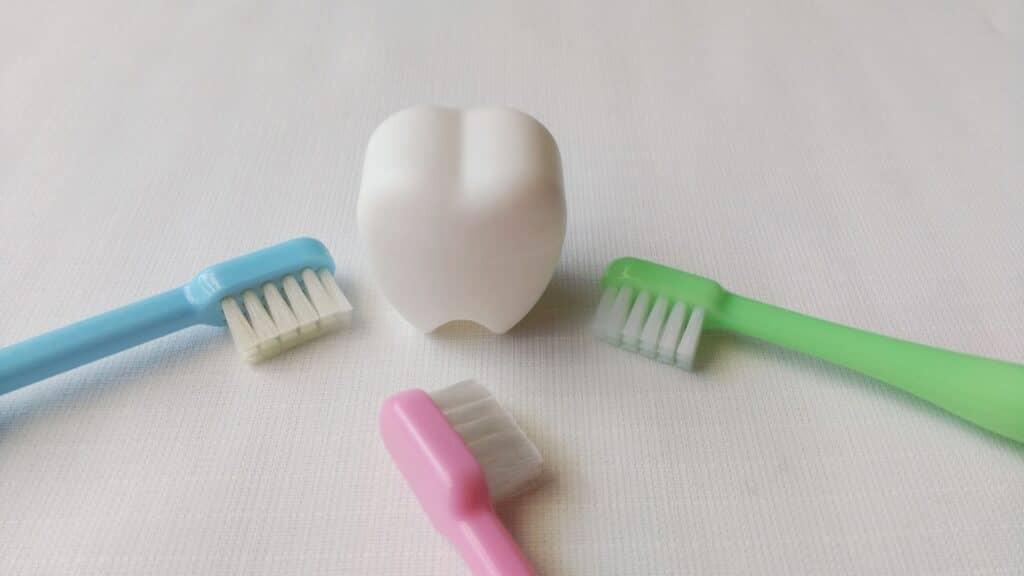 乳歯をきれいに保存する方法
