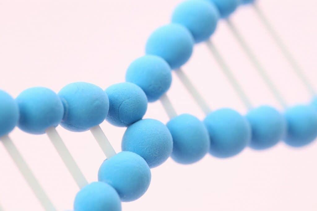加齢により精子の運動率が悪かったり、DNAが損傷する