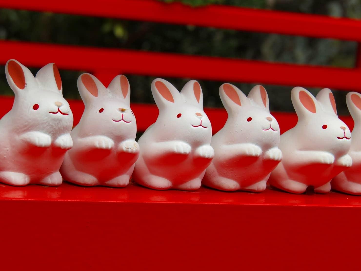 京都で人気の子宝神社、子授け寺はどこ? どうしてうさぎを祀る神社が子宝神社として人気なの?