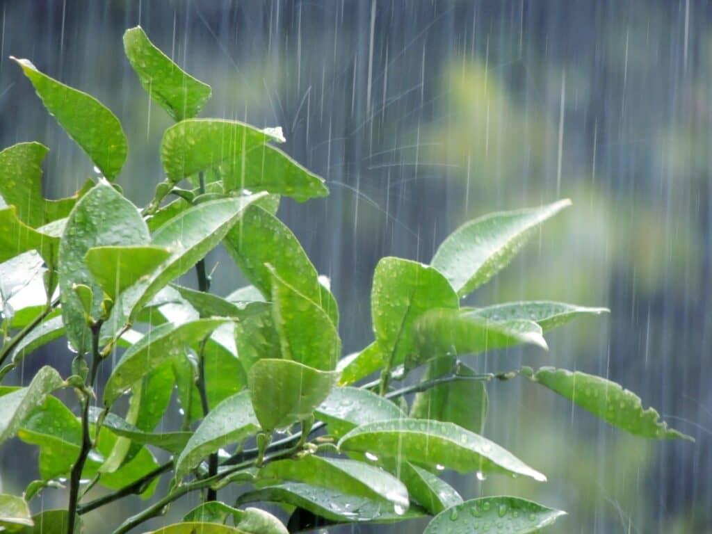 雨の日でもOK! 子供と一緒に行きたいおでかけスポット13選