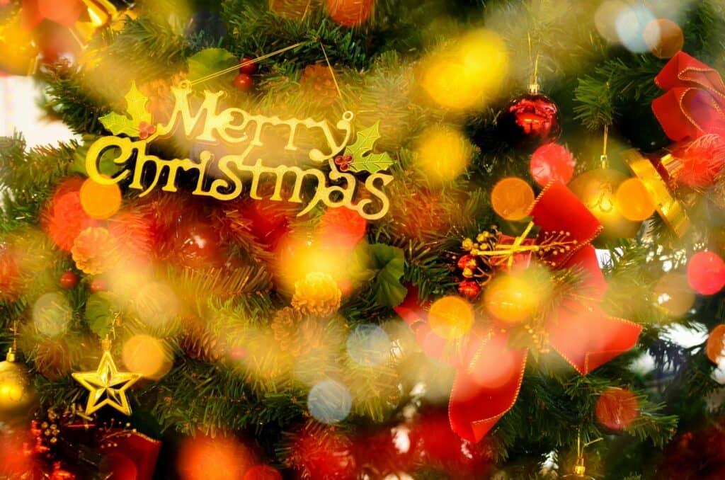 ツリーやリースなど部屋の飾り付けをしてクリスマス気分に
