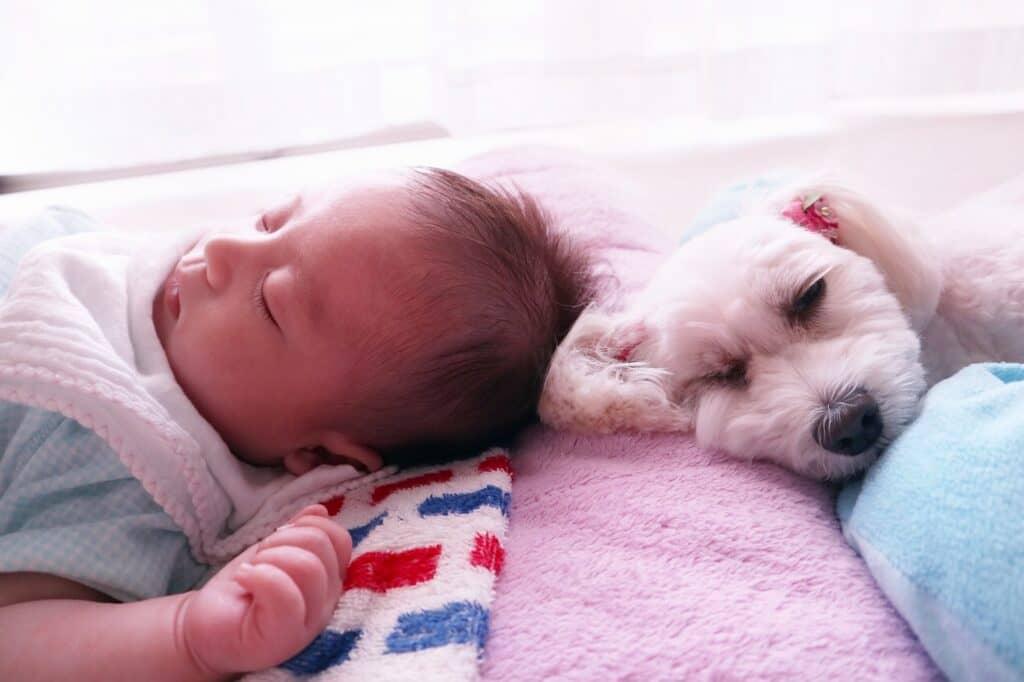 赤ちゃんを扉の開閉音で起こすことなく様子を確認できる