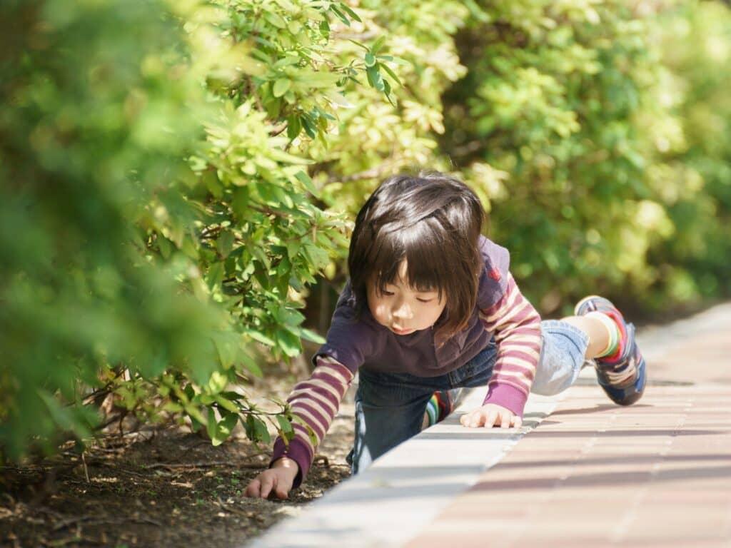 5歳児の発育の特徴
