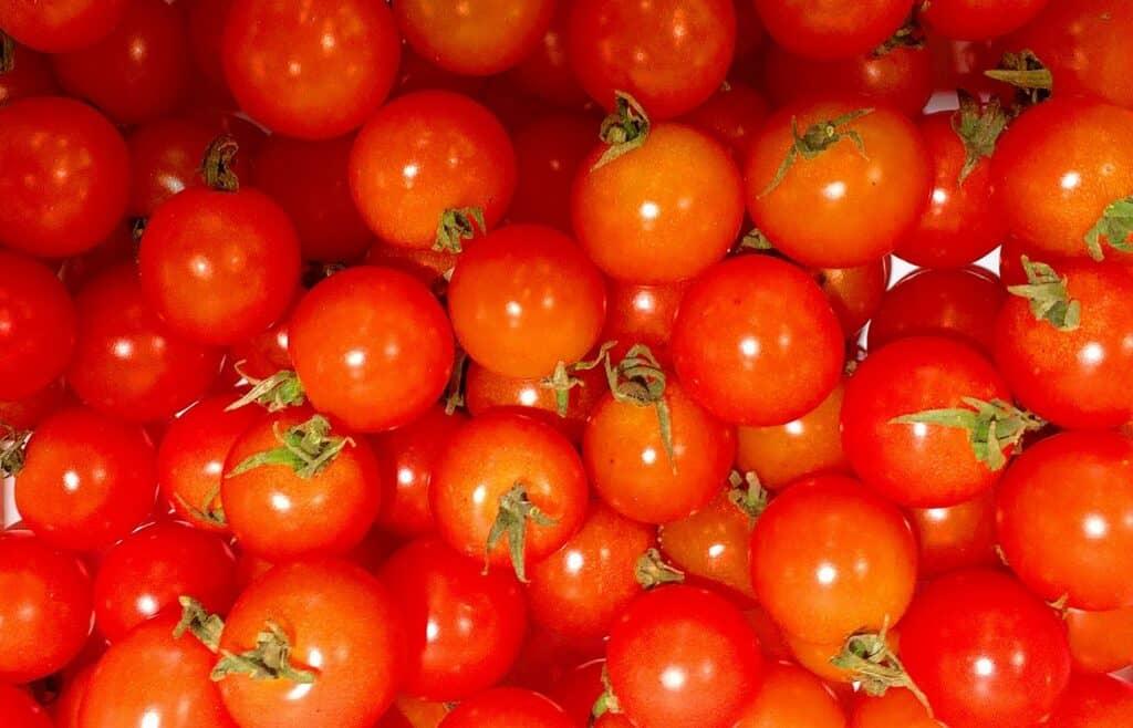トマトに含まれる栄養素は?
