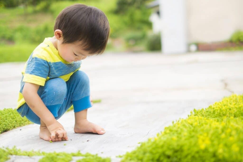 男の子の産み分け方法