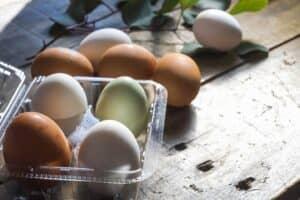 【管理栄養士監修】離乳食の卵はいつから? 進め方は? マヨネーズや生卵は? 与える頻度やレシピも紹介