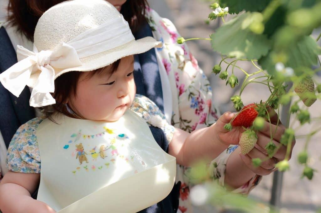 果実をイメージする女の子の名前