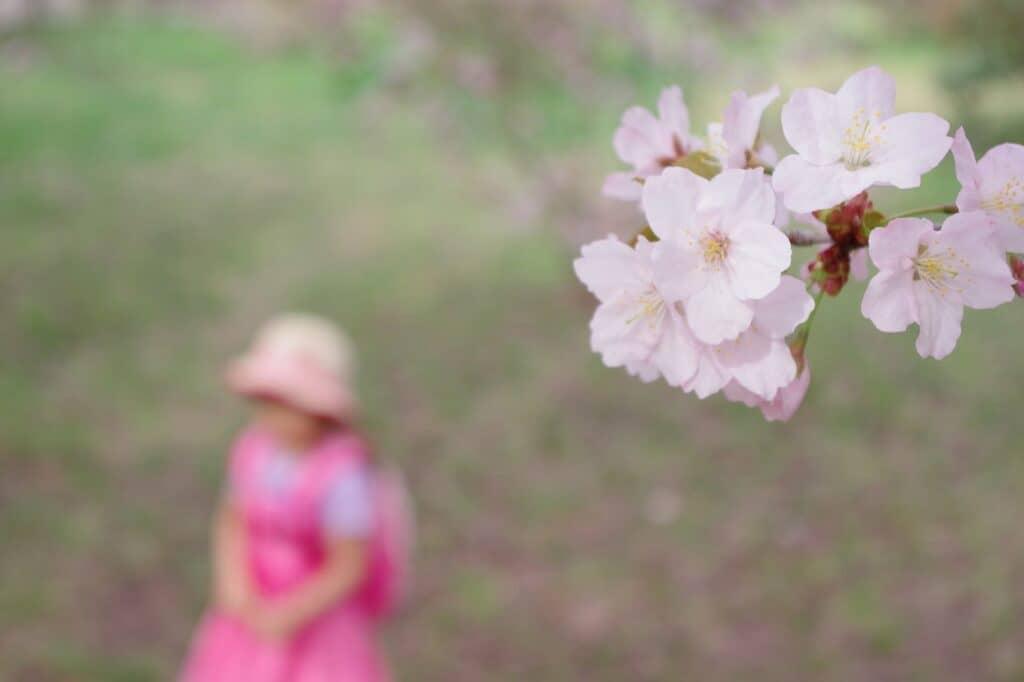 春の花にちなんだ女の子の名前