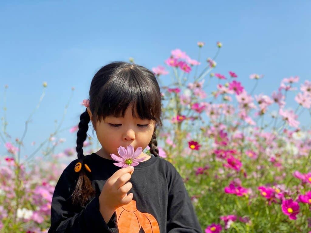 女の子の添え字・止め字:花(か)