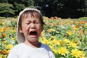 子供の癇癪(かんしゃく)とは? 対応に正しい方法はある? 困った時の対応策