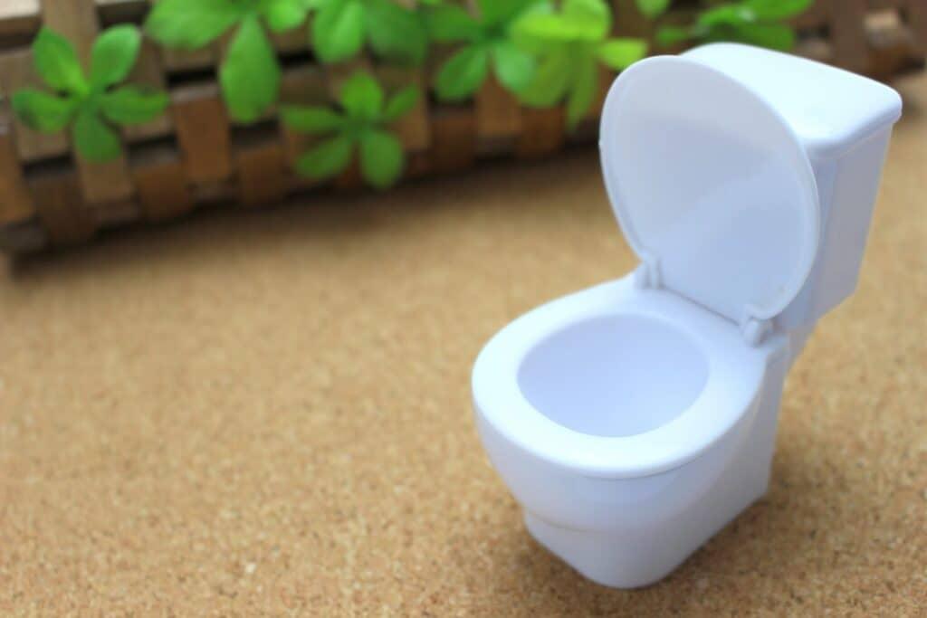 トイレは「小」を意識する