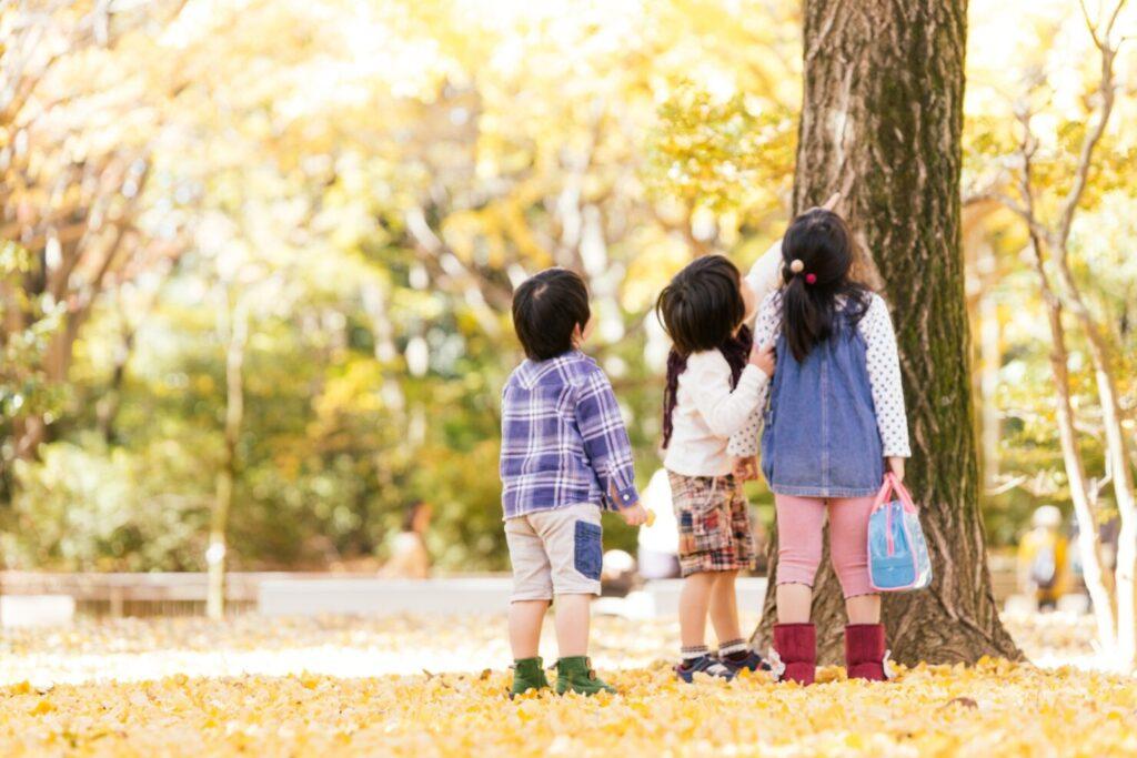 幼児教育が大切な3つの理由