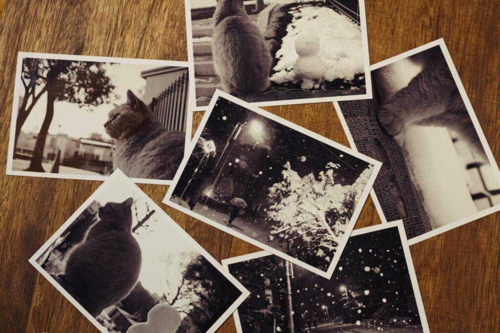 整理した写真のおすすめ保存方法