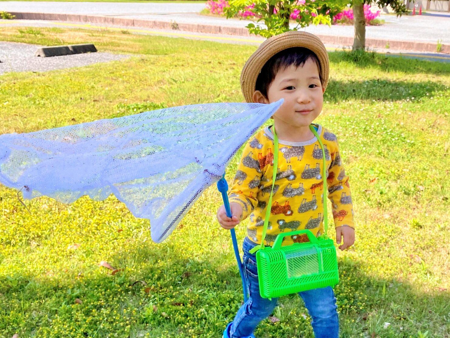 虫かごを使って子供と一緒に昆虫観察を楽しもう!