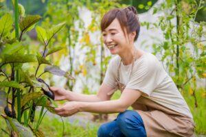 家庭菜園におすすめの野菜9選 初心者ママでも失敗しない始め方を解説