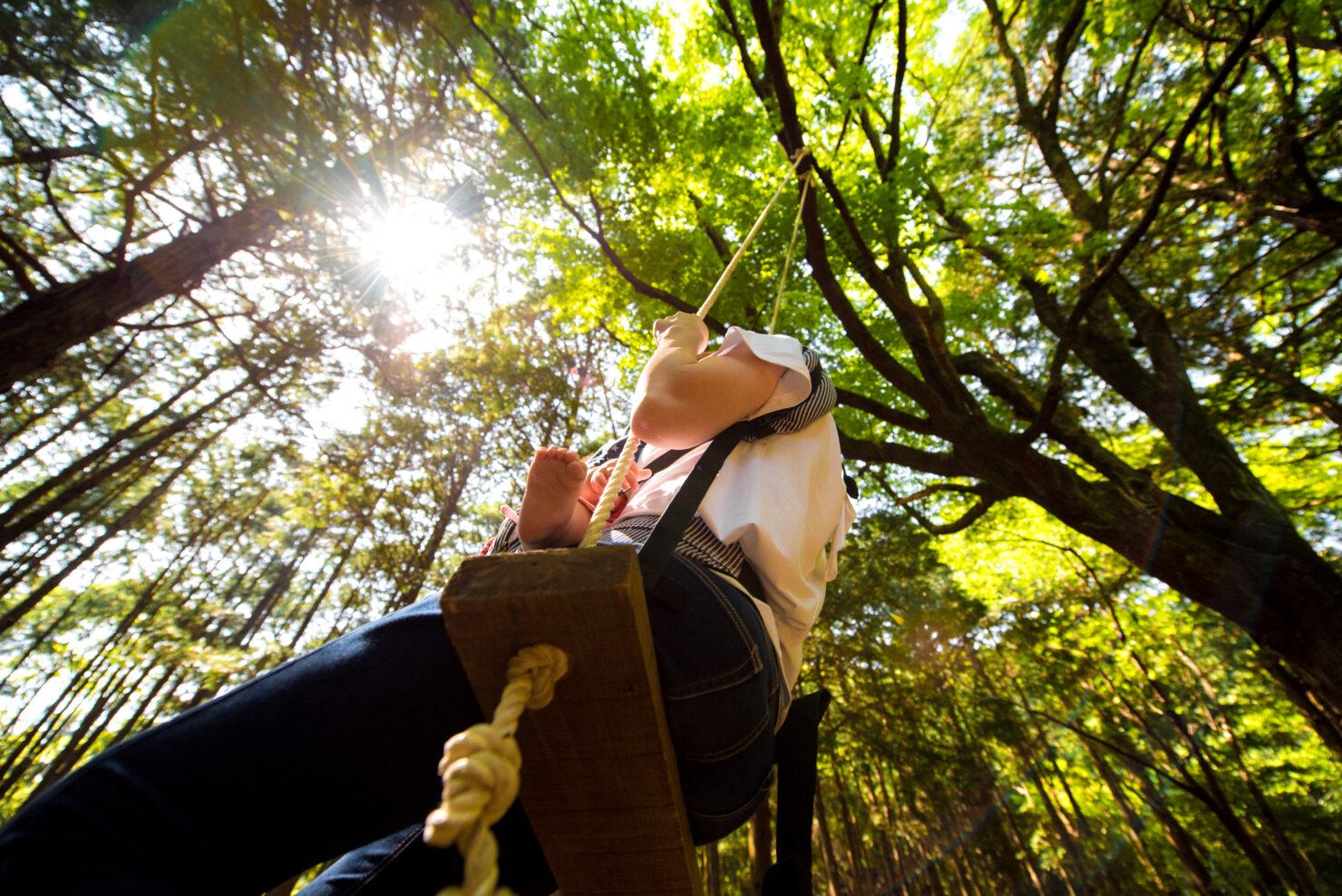 植草学園大学小倉キャンパス共生の森